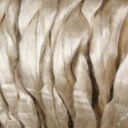 Tussah Silk top - 50g
