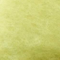 Bergschaf carded Pale Yellow-Green - 50g