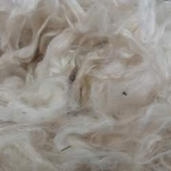 Mohair fleece - 50g